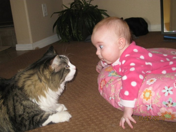 Image result for kids funny pictures with pets
