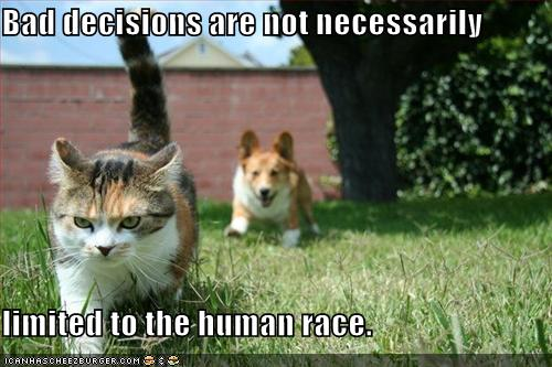 Friday Funny! ;-)  Bad decisions (1/5)