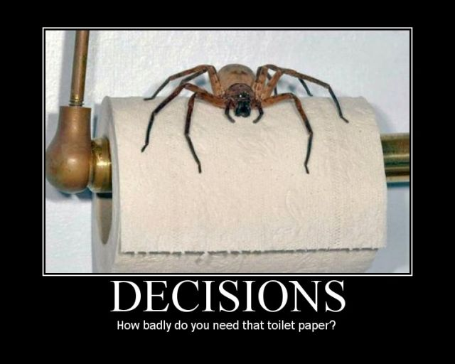 Friday Funny! ;-) Bad decisions
