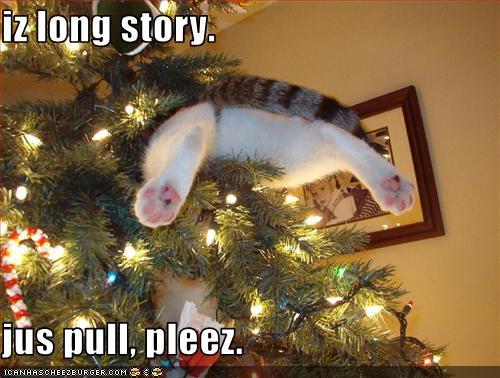 Friday Funny! ;-) Christmas humor | iLife Journey