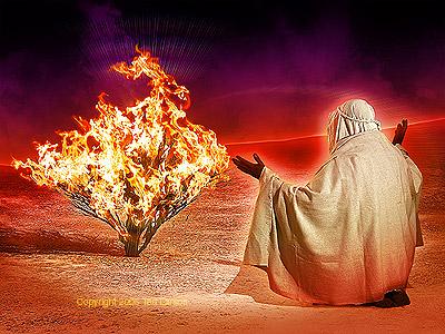 God's trump card... His presence! (1/2)