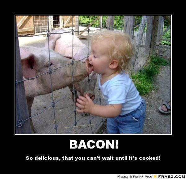 friday funny   for bacon lovers ilife journey