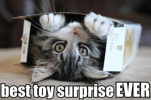 Toy Surprise