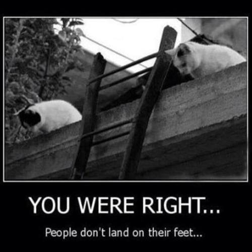 Funny Friday Comments: Friday Funny! ;-) You Were Right…